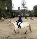 Ayrshire  Equestrian - Craigengillan Stables