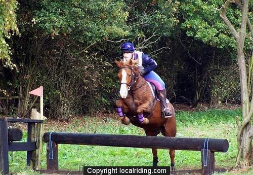 Caistor Cross Country - 100b8731