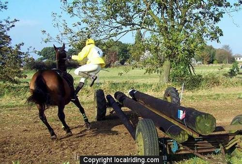 Caistor Cross Country - 100b9462