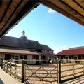 Casteldyke Equestrian Centre