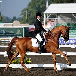 Dressage Horse Corbier ridden by Kate Attlee