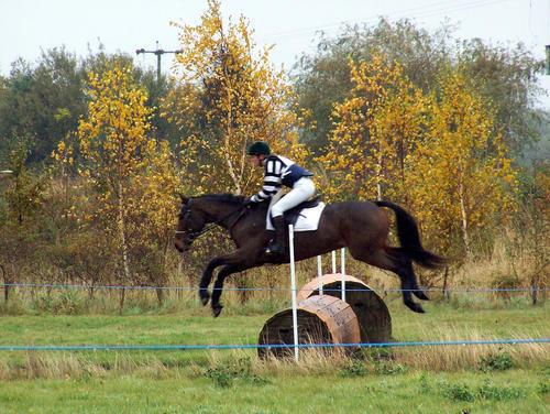 Epworth Equestrian Cross Country 804