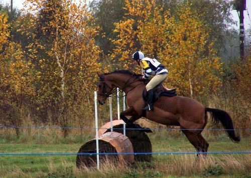 Epworth Equestrian Cross Country 806