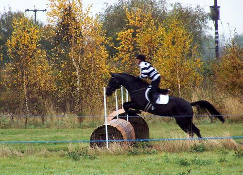 Epworth Equestrian Cross Country 808