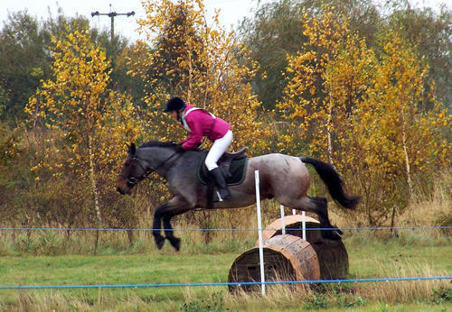 Epworth Equestrian Cross Country 810