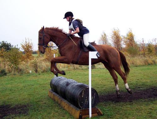 Epworth Equestrian Cross Country 813