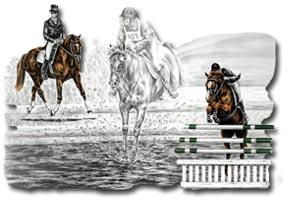 epworth and district riding club EDRC