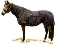 Treating Equine Sweet Itch - Boett Blanket