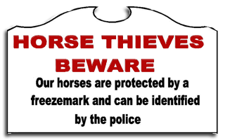 Horse Thieves Beware