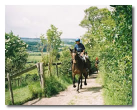Kent Equestrian - Riding on The North Downs Way