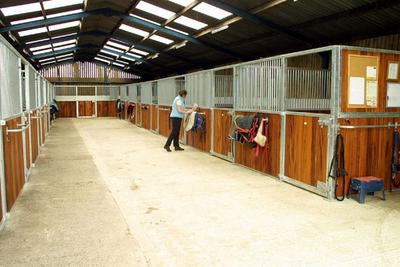 local riding lincolnshire - lincoln livery yards and horse stables