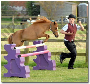 newlands equestrian fun day - we're going for it