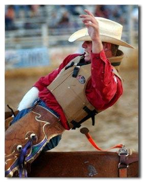 Texas Equestrian - Texas Rodeo from localriding.com