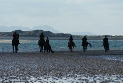 Beach riding at Anglesey Riding Centre