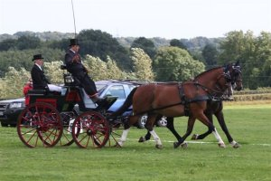 Ashfields Carriage Driving