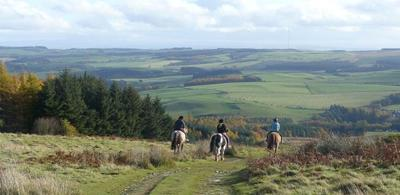 Pony trekking on the Duchesses Drive at Bowhill Estate in Selkirk, Scottish Borders