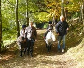 Lead rein rides at Bowhill Estate in Selkirk, Scottish Borders