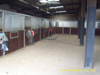 Bridge House Farm Livery Stables