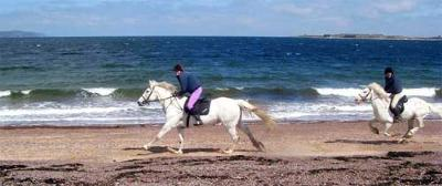 Broomhill Beach Ride