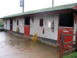 Buckleap Stables - Secure Stabling