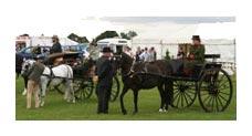Epworth Saddle Club and Epworth Show
