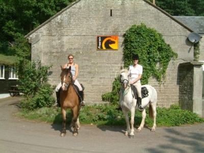 Setting Off on Your Trail Ride