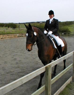Melanie Finlay BHS IntSM - Freelance Equestrian Services