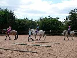 Riding Lessons at Grenoside