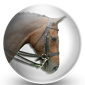 Horse Bridle Icon