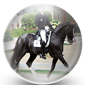 Dressage Riding Icon