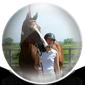 Horse Care Icon