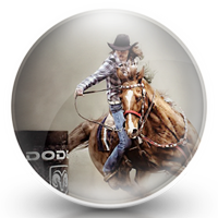 Rodeo Icon