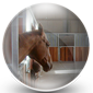 Horse Stables Icon