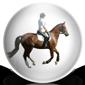Riding Horse Icon