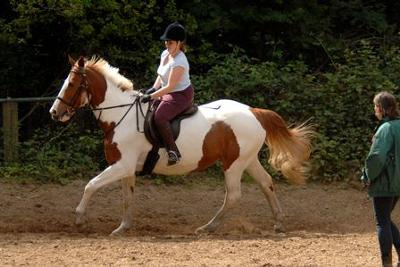 Riding Lessons at Wimbledon Village Stables