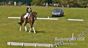 Winning the Dressage at Buckminster ODE