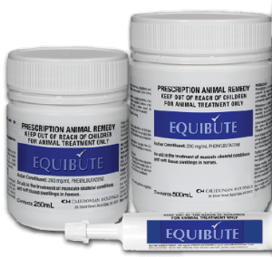 Equine Joint Supplements - Bute & Banamine
