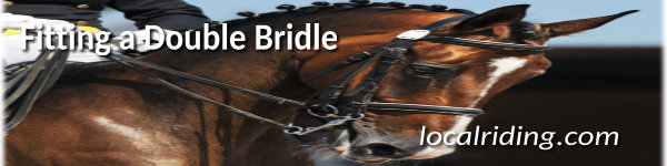 The Double bridle - The right aid in the correct hands