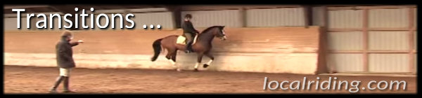 Dressage Training - Lighter Transitions & the Half Halt
