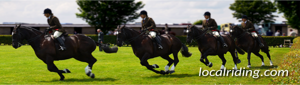 English Equestrian Counties - showing in Yorkshire