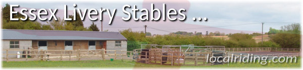 Essex Livery Yards & Stables
