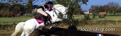 Eventing Cross Country Jumping
