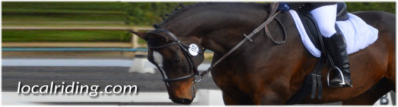Equestrian Eventing Dressage Competitions