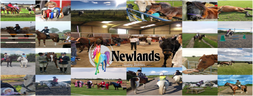 Newlands Equestrian Livery Stables Epworth