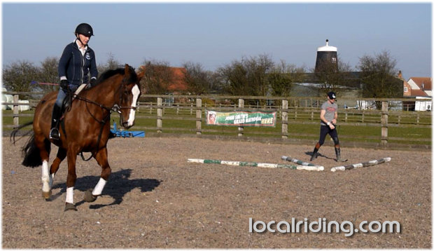 Flatwork Basics - to help improve equine fitness
