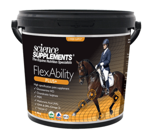 Equine Joint Supplements - Glucosamine