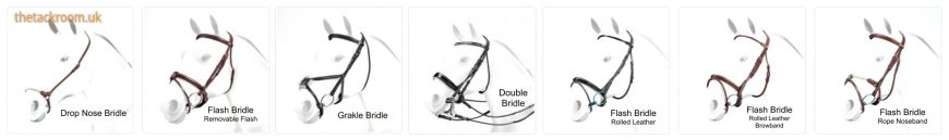 Horse Bridle Styles - hdr