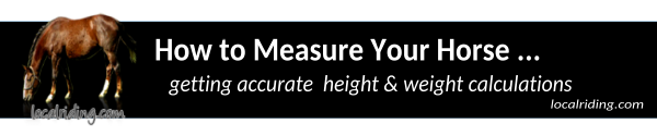 How to measure a horse - girth-weight