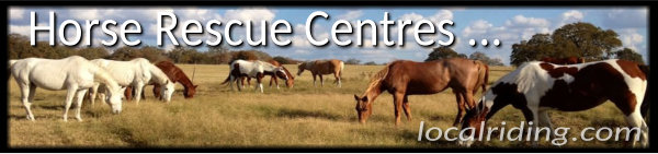Horse Rescue Centres & Sanctuaries