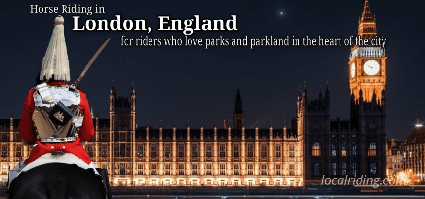 Horse Riding in London - Westminster Parliament